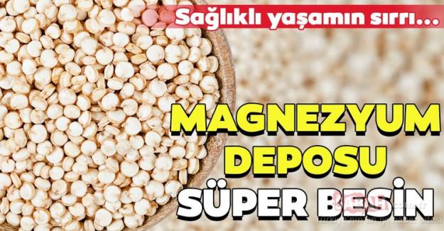 Magnezyum Deposu Süper Besin